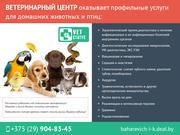Ветеринарная помощь. Профессиональные специалисты.